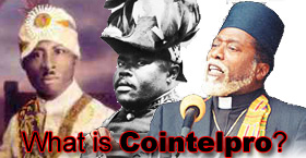What is Cointelpro?